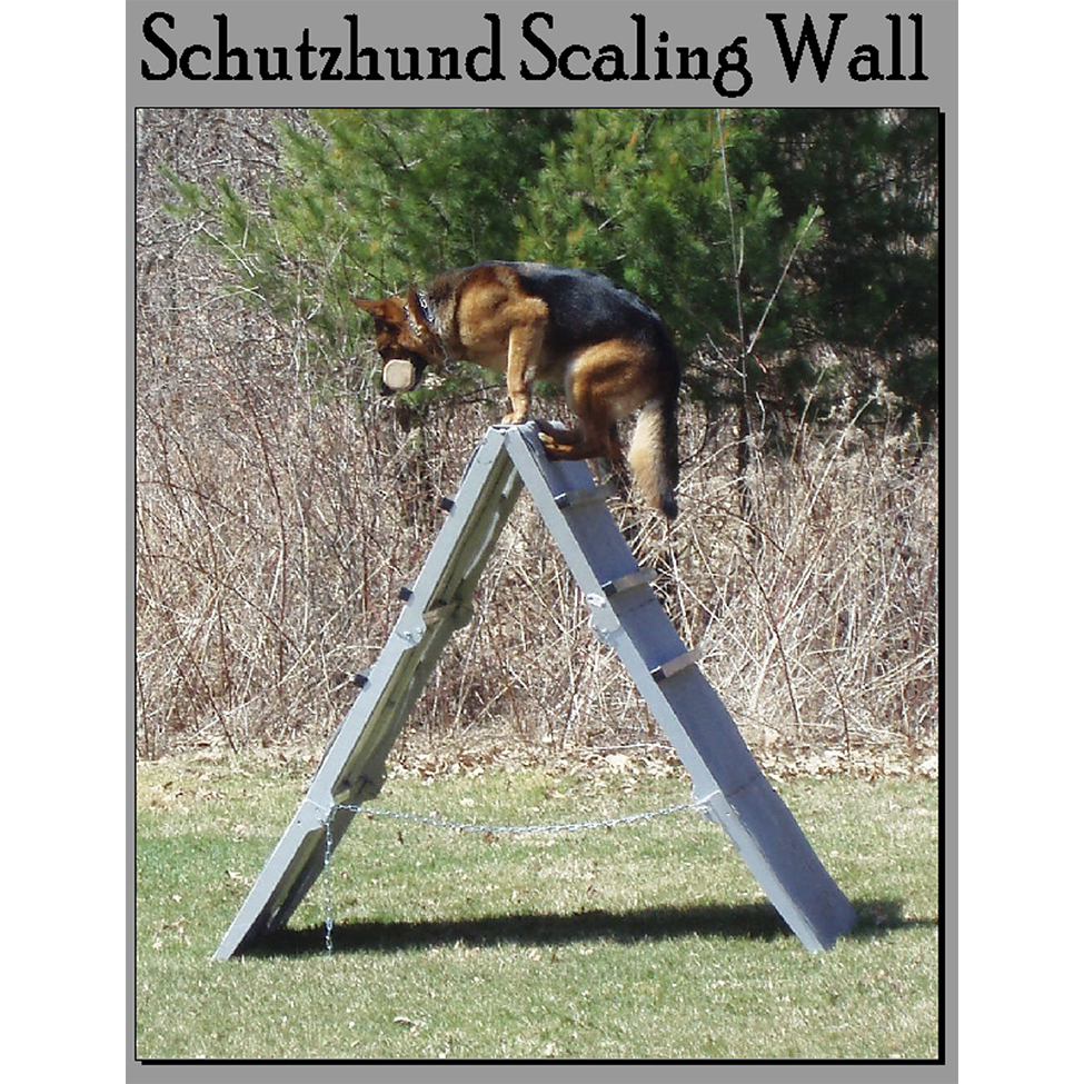 Scalling Wall
